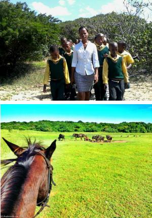 Sport n Safari - culture Saint lucia iSimangaliso